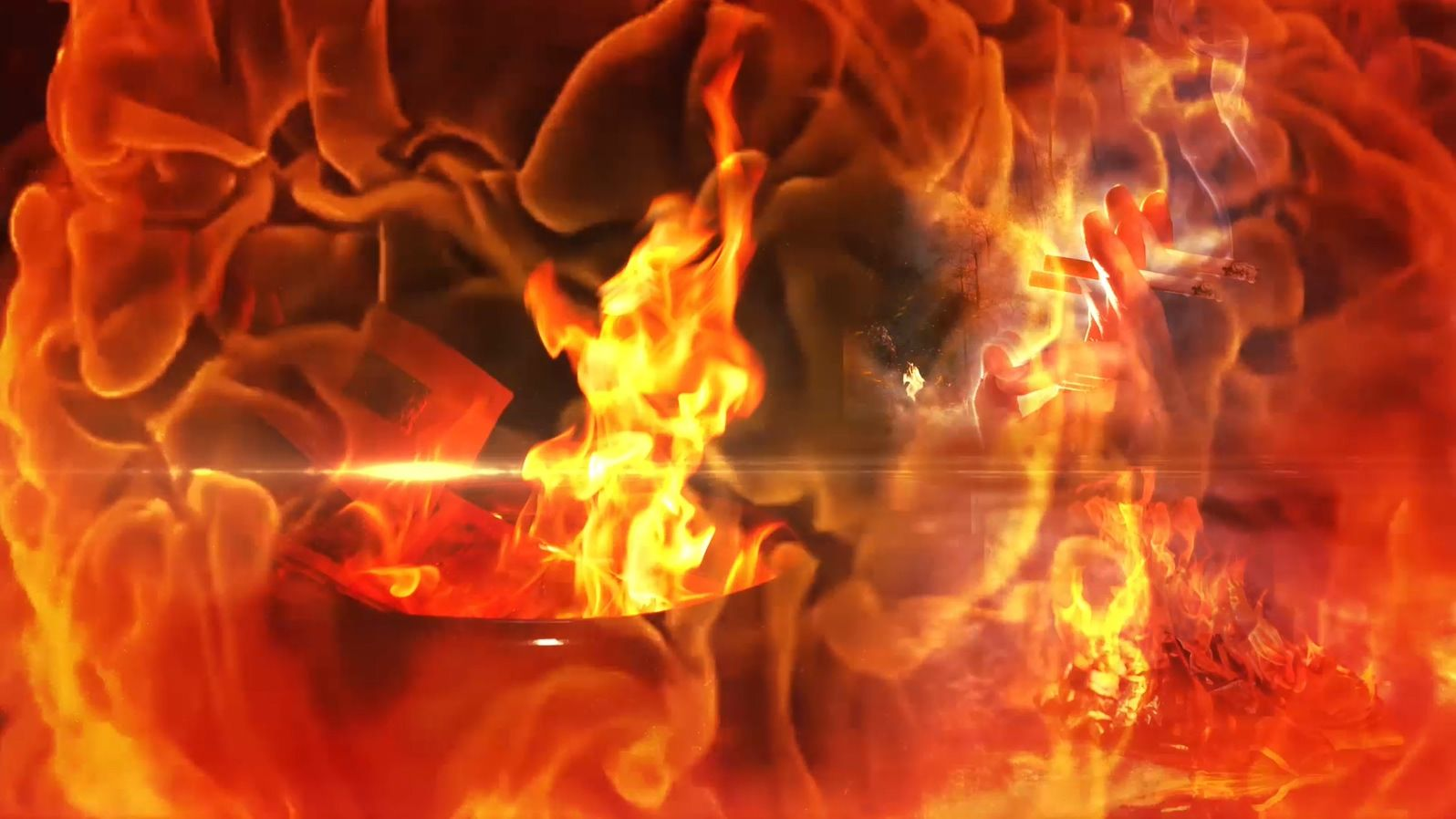 视频 | 防森林火灾 保绿色家园