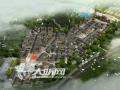 市领导调研尧坝扶贫旅游开发和茜草工业