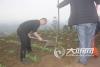 为泸县增绿 百和镇开展义务植树