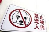 """古蔺:狗和人""""抢""""病床"""