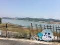 泸州非法码头拆除整治工作已全面完成