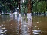 四川现57年来最猛汛期 市水务局上线谈安全