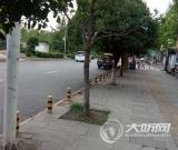 泸县花园干道停车难 市民建议增设停车位