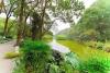 一季一景 泸州已建成41个城市公园