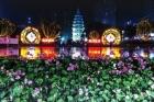 火树银花耀泸州