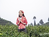 【新春走基层】发展茶产业 促增收助脱贫
