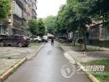 泸州:小区绿化带被硬化 业主安装地锁变私家车位