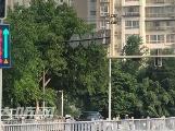 泸州首个借道左转车道试运行 市民希望推广
