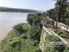 泸州:纳溪防洪堤上都长满杂草 影响汛期安全