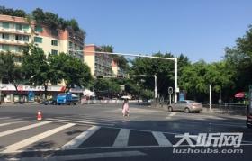 文明有礼泸州人  市民自觉遵守交通规则
