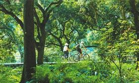 泸州入选最具生态竞