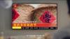 2019年中国农民丰收节公益宣传片发布