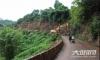 串起3镇9村  赤水河环线旅游公路(合江段)正式动工