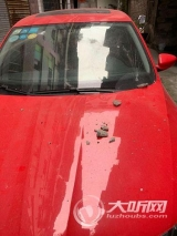 泸州:居民楼外墙瓷砖脱落 社区及时处置排除隐患