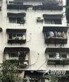 泸州:居民楼外墙瓷砖脱落  社区及时介入