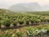 泸州高质量发展这一年 县域经济发展彰显新策略