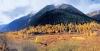 四川两个国家森林公园总体规划获批,均在阿坝州