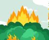 关于森林火灾,这些事要知道