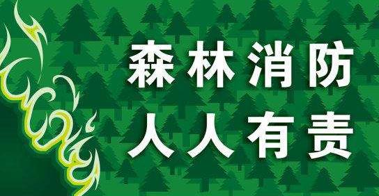 �P於森林◆防火 �@些知�R你���法�知道